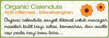 Organic Calendula